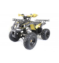 Motoland ATV 125 FOX